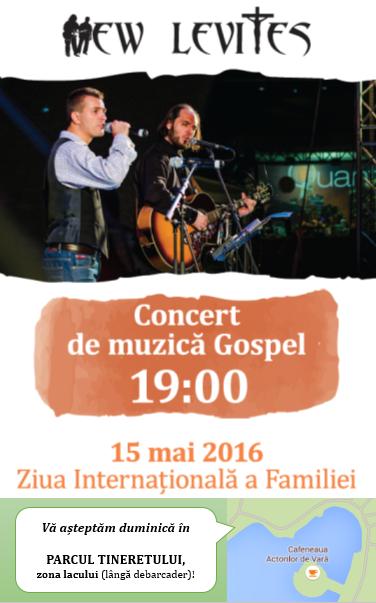 Afis concert New Levites 15 mai 2016